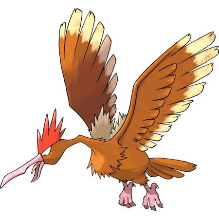 Pokemon Fearow Images